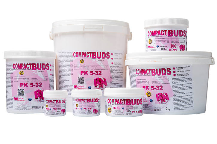 Compact Buds