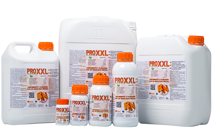 ProXXL
