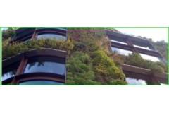Los Greenwalls Jardines Verticales, Muros Verdes o Paredes Vegetales