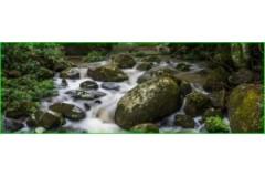 Agua vitalizada con vortex